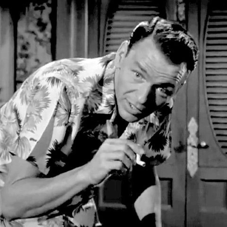 Franck Sinatra in Hawaii shirt