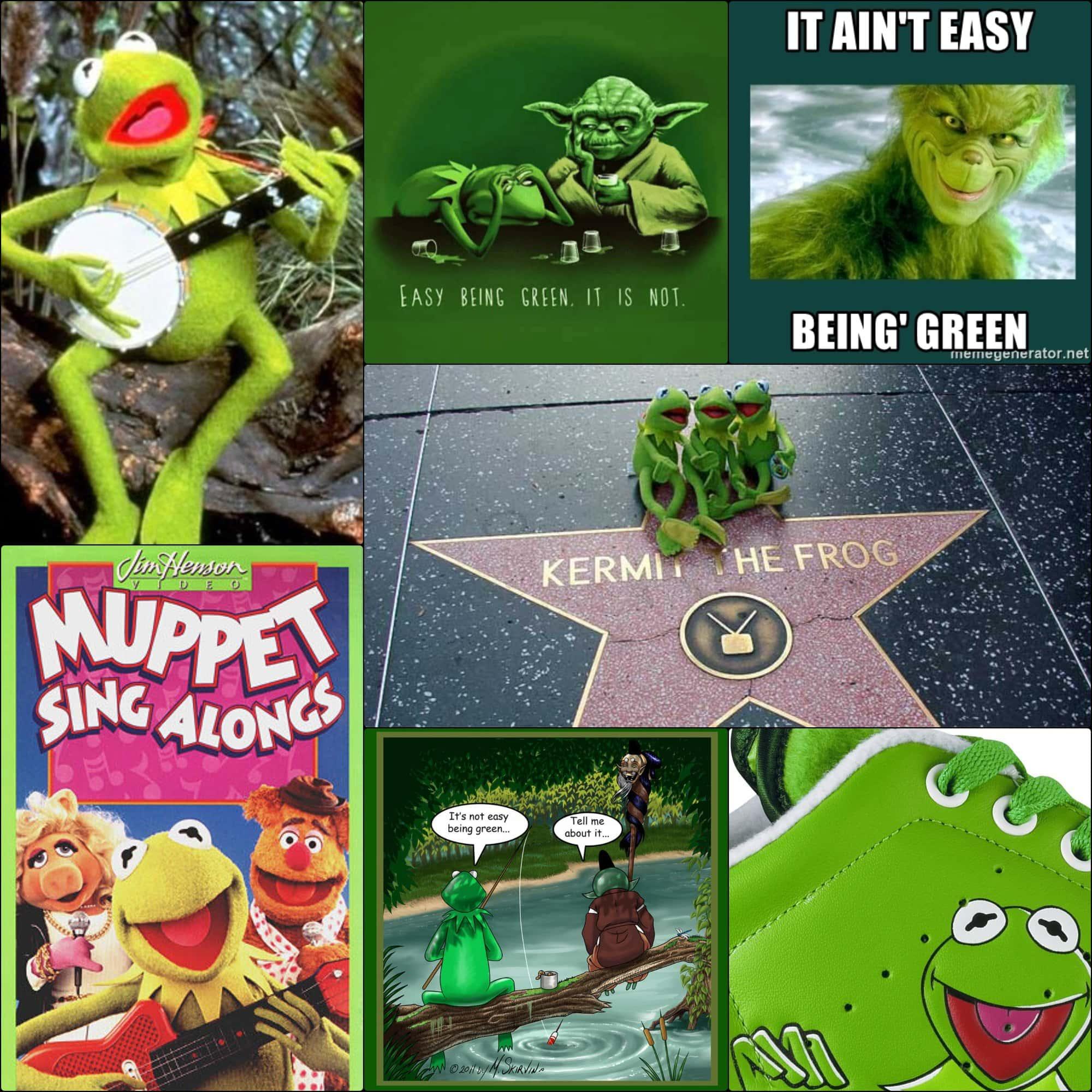 Caco, o sapo - Não é fácil ser verde - Muppet cantando junto com RUNWAY MAGAZINE