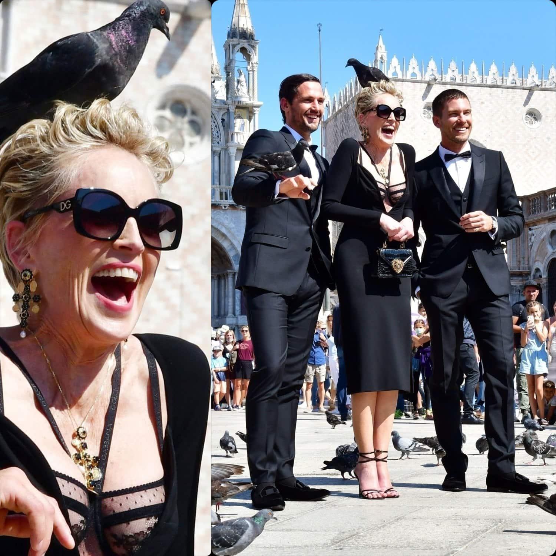 Lo champagne shooting di Sharon Stone per Dolce Gabbana con l'intervento dei piccioni RUNWAY MAGAZINE